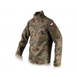 Polish Army Uniform wz2010