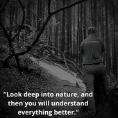 """Look deep into nature, and then you will understand everything better."" Albert Einstein@patrolxshop @patrol.x #survival #bushcraft #trip #trekking #outdoor #airsoft #army #military #hiking #armyshop #ireland #adventure #fishing #camping #gear #tactical #tacticalgear"